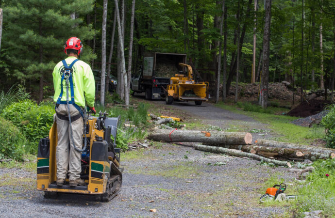 Emergency Tree Removal-Sweetwater FL Tree Trimming and Stump Grinding Services-We Offer Tree Trimming Services, Tree Removal, Tree Pruning, Tree Cutting, Residential and Commercial Tree Trimming Services, Storm Damage, Emergency Tree Removal, Land Clearing, Tree Companies, Tree Care Service, Stump Grinding, and we're the Best Tree Trimming Company Near You Guaranteed!