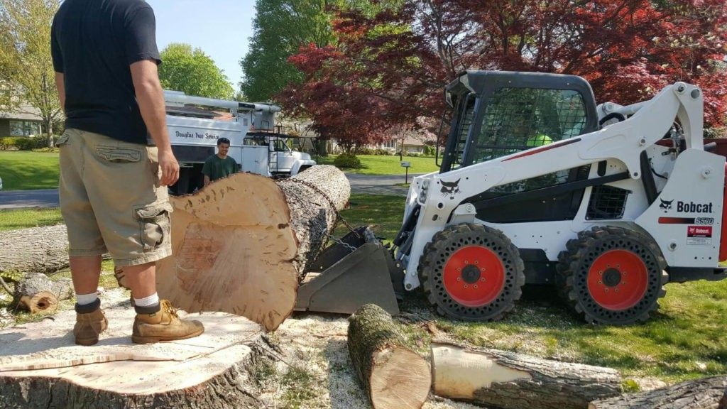 Services-Sweetwater FL Tree Trimming and Stump Grinding Services-We Offer Tree Trimming Services, Tree Removal, Tree Pruning, Tree Cutting, Residential and Commercial Tree Trimming Services, Storm Damage, Emergency Tree Removal, Land Clearing, Tree Companies, Tree Care Service, Stump Grinding, and we're the Best Tree Trimming Company Near You Guaranteed!